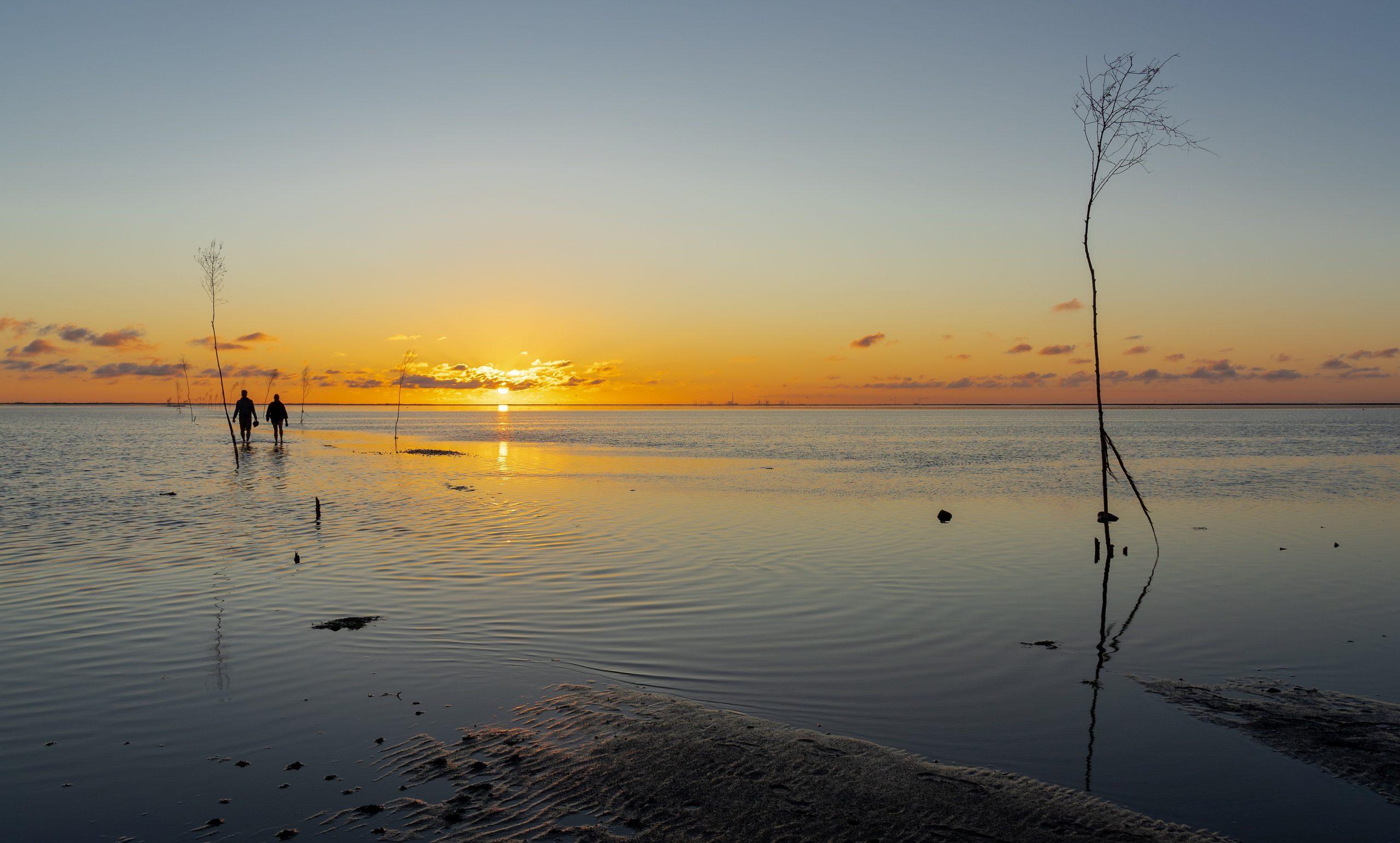 Sonnenuntergang, Wattenmeer und Ebbe.