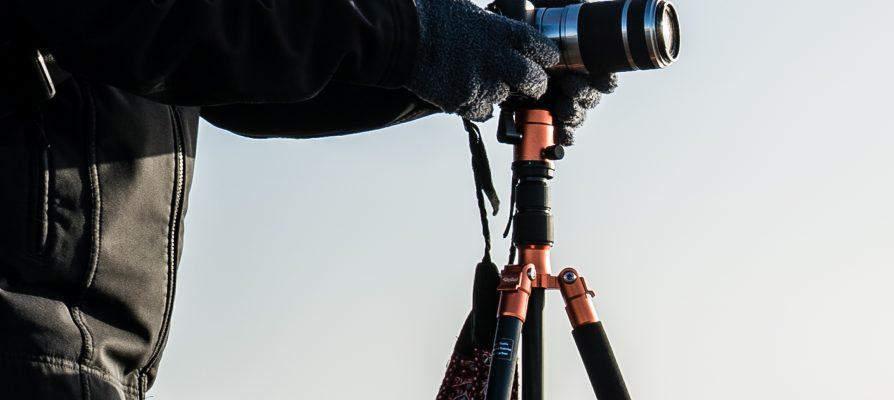 Neue Fotoworkshops für 2020