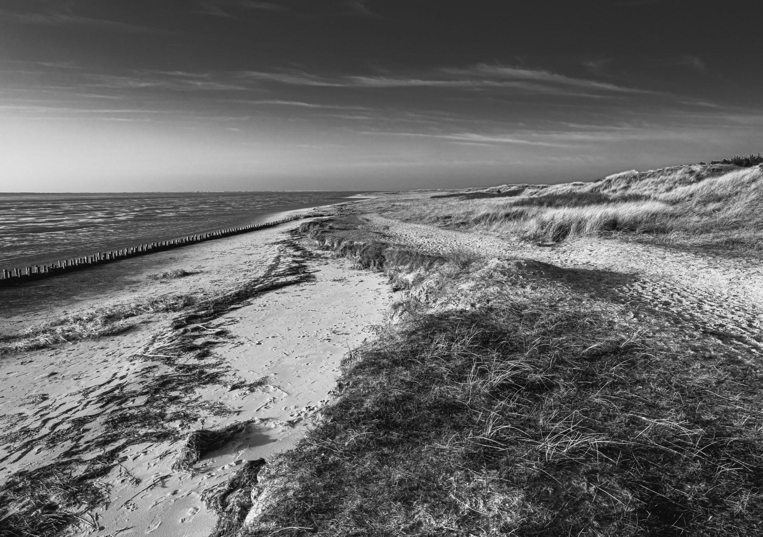 Rømø – Sonne, Strand und Pferde.