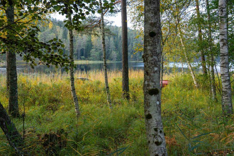 Schwedische See-Landschaft