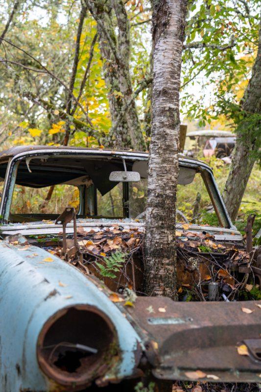 Autowrack im Wald in Båstnäs